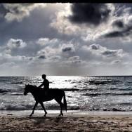 sunset horse riding