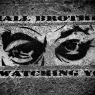 Small Brother is Watching You